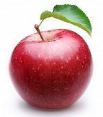 Постер, плакат: Спелый Красное яблоко с листа Изолированные на белом фоне