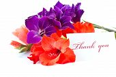 foto of thank you  - say  - JPG