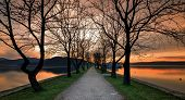A Wonderful Pier In The Form Of An Alley With Trees And A Lake At A Romantic Sunset. Kastoria, Greec poster