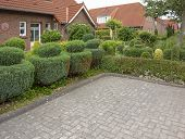 Idyllic Garden With Sculptured Bushes Seen Carolinensiel, A Town At The North Sea Coast In Germany poster