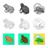 Vector Design Of Wildlife And Bog Symbol. Collection Of Wildlife And Reptile Vector Icon For Stock. poster