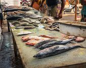 Retail Sale Of Fish On The Dirty Counter At The Fish Market, Around People Who Watch And Choose Fish poster
