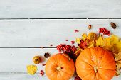 Thanksgiving Background: Pumpkins And Fallen Leaves On Wooden Background. Thanksgiving And Halloween poster