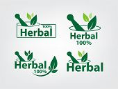 Green Herbal Logo Template,herbal 100 On White Background poster