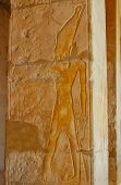 foto of hatshepsut  - Ancient Egyptian Relief On Column In Hatshepsut Temple - JPG