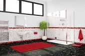 Bathroom In Red, White And Black
