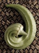 pic of okras  - close up of an curly okra pod - JPG