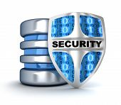 stock photo of antivirus  - Shield and abstract database  - JPG