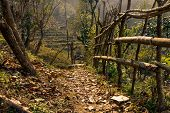 stock photo of nepali  - Trail in the nepali countryside - JPG