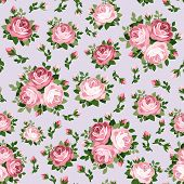 Seamless pattern with pink roses. Vector illustration.