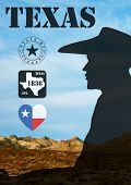 picture of texas map  - Poster of Texas - JPG
