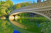 Central Park Bridge, New York City
