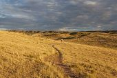 stock photo of prairie  - sunrise over Colorado prairie with a distant mountain biking figure  - JPG