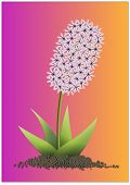 stock photo of lilas  - lila hyacinth flower on the colorful background - JPG