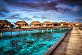 Luxury resort, many cute bungalow on the water, amazing view, beautiful coral under transparent wate