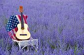 picture of purple sage  - Guitar and American flag on a wicker chair in a field of Russian sage.