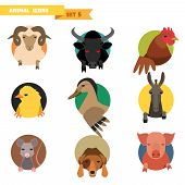 foto of animal husbandry  - Farm animal avatars set with flat design - JPG