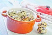picture of quail  - quail eggs - JPG