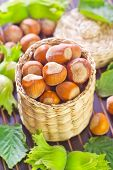foto of hazelnut  - hazelnuts on a table - JPG