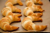 ������, ������: Croissants On A Baking Tray