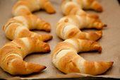 Постер, плакат: Croissants On A Baking Tray