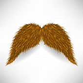 pic of rogue  - Brown Hairy Mustache Isolated on Grey Background - JPG