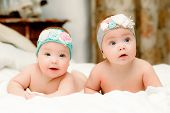 pic of twin baby girls  - Two twin babies, seven-month girls in nice headbands in bed on white sheets