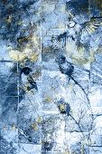 foto of angry bird  - blue crackle wall texture color crackle background With Bird - JPG