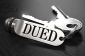 stock photo of diligent  - DUED  - JPG