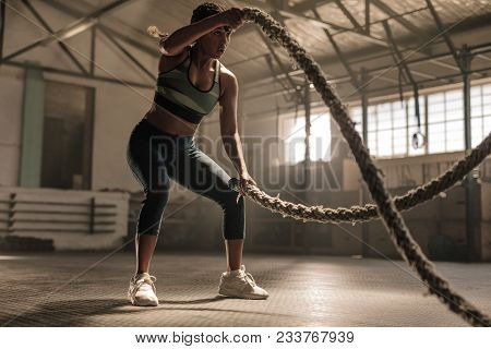 poster of Fitness Woman Using Training Ropes For Exercise At Gym. Athlete Working Out With Battle Ropes At Cro
