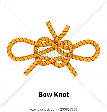 Bow Sea Knot Bright Colorful
