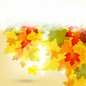 stock photo of fall leaves  - Autumn background with leaves and copy space for your text - JPG