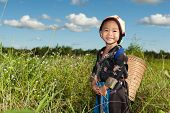 picture of hmong  - asian hmong girl on rice paddy in traditional costume - JPG