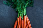 A Bunch Of Carrots. Fresh Raw Carrots With Stems. Garden Carrots On A Black Background poster