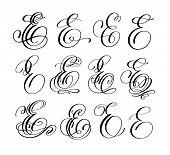 Calligraphy Lettering Script Font E Set, Hand Written Signature Letter Design, Vector Illustration poster