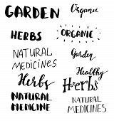 Lettering Set For Natural Products. Handwritten Logo Fresh, Nature, Organic Food, Natural Cosmetics, poster