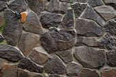 Stone Wall. Close-up Wet Wall Of Wild Stone. Stone Background. Stone Texture For Creativity. poster