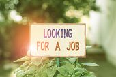 Text Sign Showing Looking For A Job. Conceptual Photo Unemployed Seeking Work Recruitment Huanalysis poster