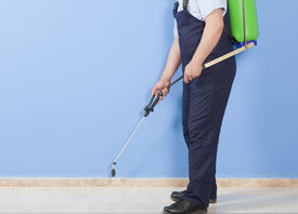 pic of pest control  - a Man is spraying insects - JPG