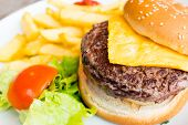 stock photo of burger  - Cheese burger  - JPG