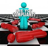 One person stands successful with words Are You Compliant to illustrate following important legal ru