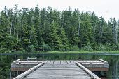 picture of dock a pond  - Small wooden dock on quiet lake backdropped by dense green pine forest on cloudy summer day in southeast Alaska - JPG