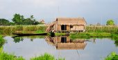 Peaceful rural scene in Inle Lake, Myanmar (Burma)
