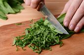 stock photo of sorrel  - Chopped sorrel on wooden board close - JPG