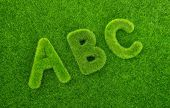 Alphabet letters ABC made from grass with grass background