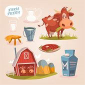 pic of dairy cattle  - Cow farm - JPG