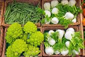 image of romanesco  - Fennel and romanesco broccoli for sale at a market - JPG
