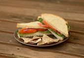 Vegetable Sandwich And Tortilla Chips