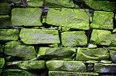 old brickwork - abstract background with green stones