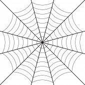 image of cobweb  - cobweb design - JPG